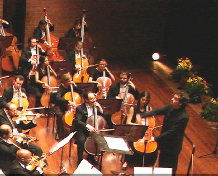 Papel Dinamizador Teatro Metropolitano